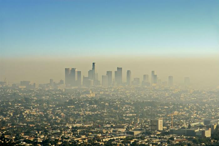 Air pollution can reduce verbal, maths scores