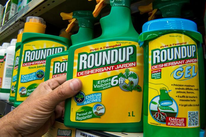 Judge weighs jury $289 million Monsanto verdict