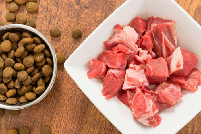 Feeding raw meat to pets could be unsafe, say scientists