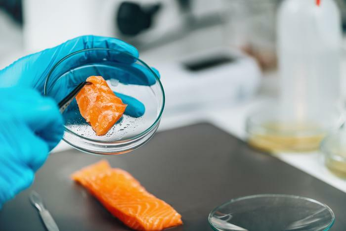 Salmonella testing on fish