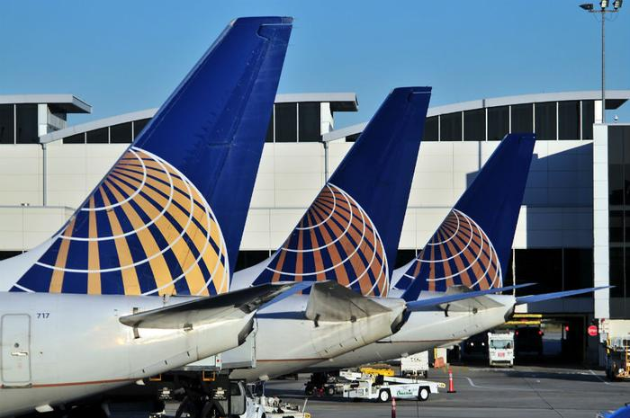 United Announces Collaboration with American Humane for Safer Animal Travel