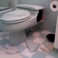 amazoncom kohler memoirs toilet