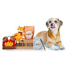 bark box product
