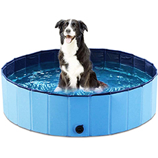 collpsible dog pool