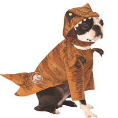 Dinosaur costume for dog
