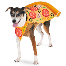 Pizza dog costume