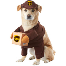 UPS delivery driver costume for dogs