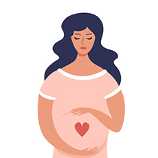 pregnancy marker first trimester icon
