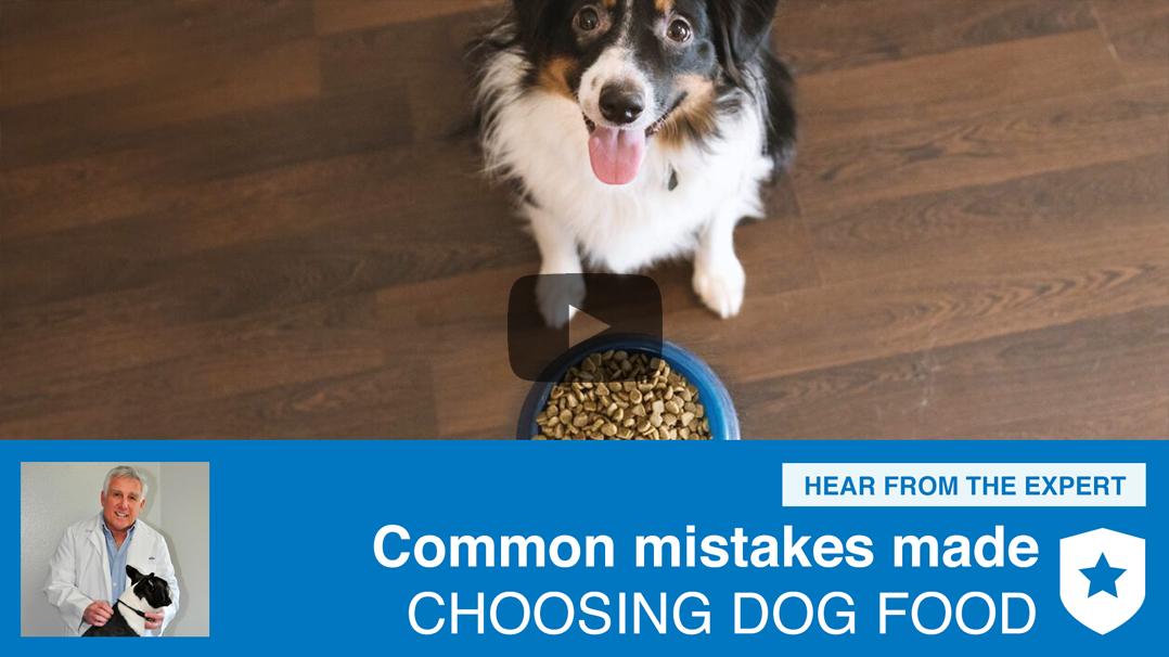 Best Dog Food Consumeraffairs