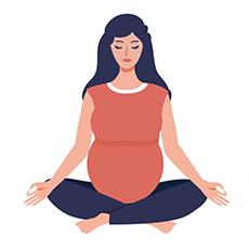 pregnancy marker second trimester icon