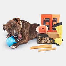 super chewer product
