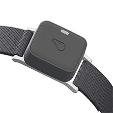 location tracker collar