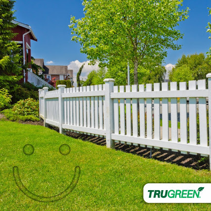 Top 3 567 Reviews And Complaints About Trugreen Lawn Care