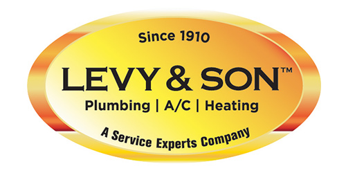 Levy & Son logo