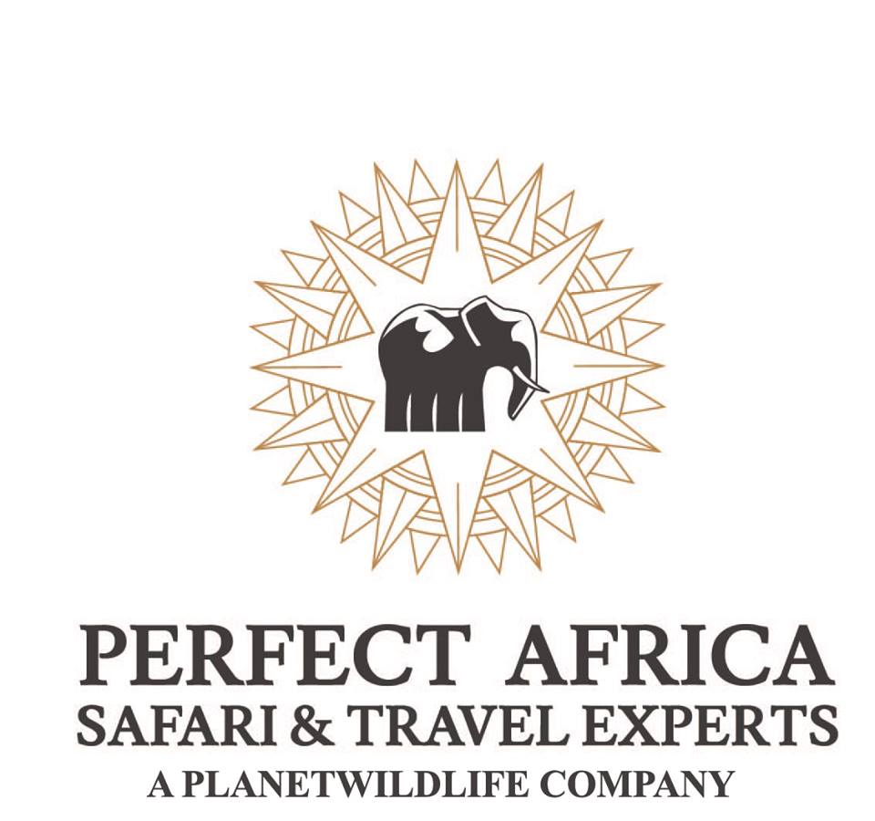 Perfect Africa logo