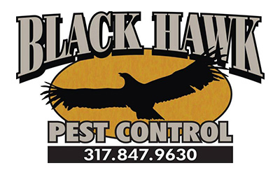 Black Hawk Pest Control logo