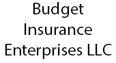 Budget Insurance Enterprises LLC logo