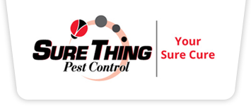 Sure Thing Pest Control logo
