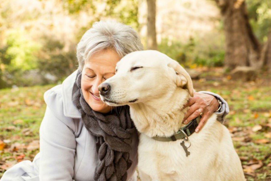 Image result for elderly person walking a dog