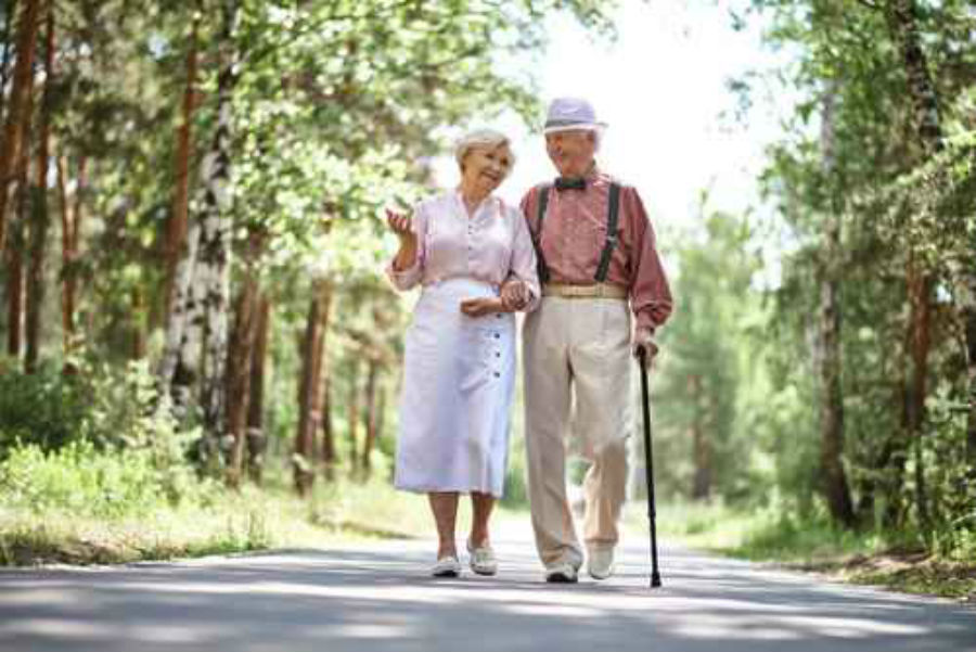 how senior citizens can improve their quality of life An evaluation of life satisfaction and health – quality of  the relationship between self-evaluation of life satisfaction  senior citizens can improve their.