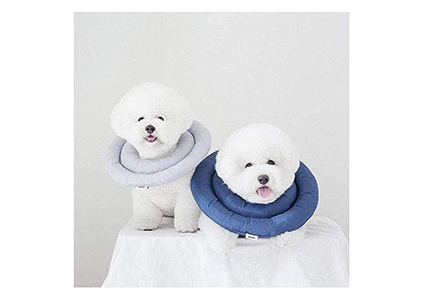 arrr dog comfy cone
