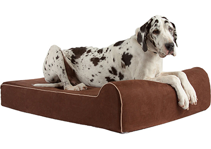 bully beds ortho dog bed