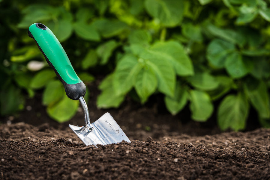 gardening mistakes can be expensive - Garden Dirt