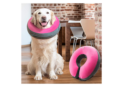 goodboy inflatable donut collar