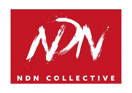 ndn collective logo