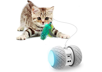 robotic cat toy