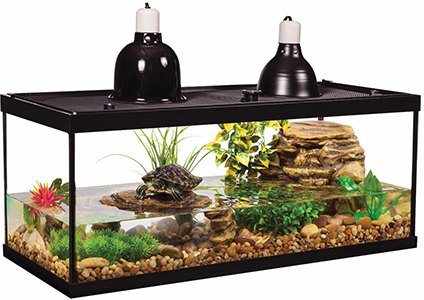 tetra aquatic turtle kit