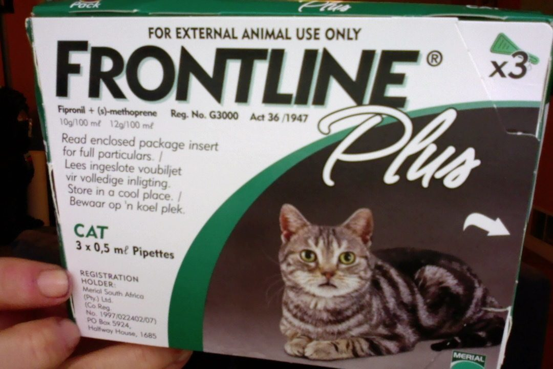 Frontline Plus For Dogs Toxic To Cats