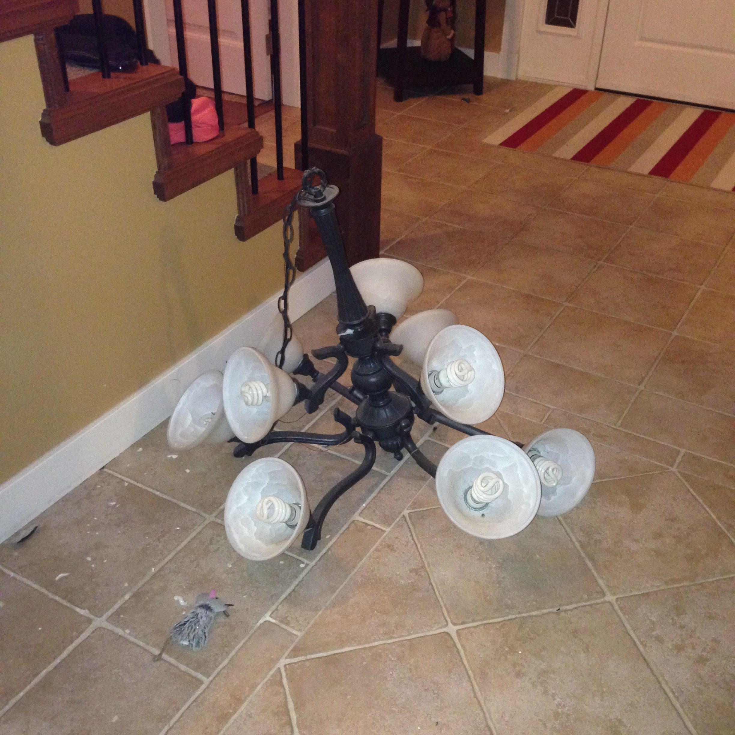top 70 complaints and reviews about hampton bay lighting