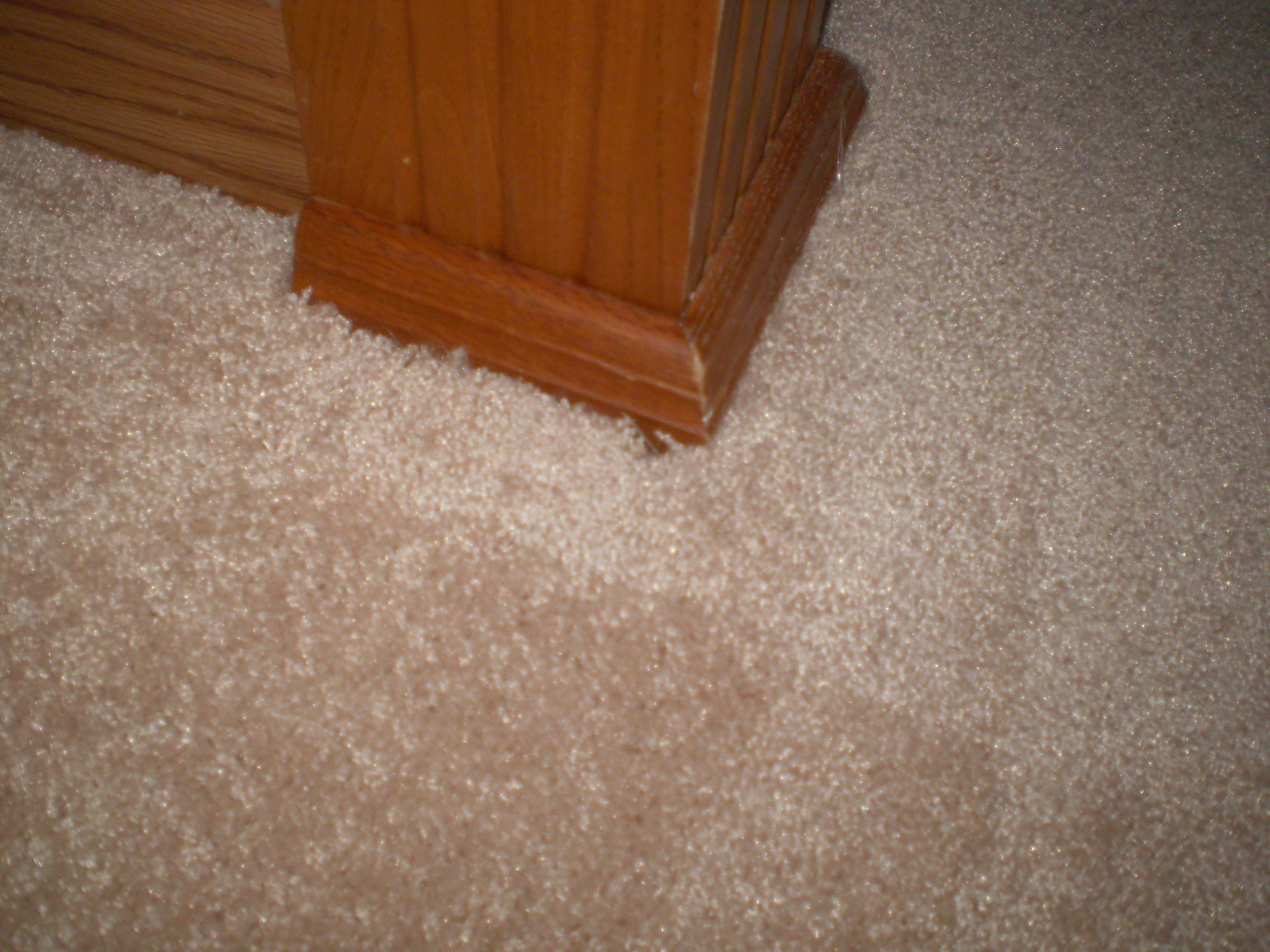 the first of may we selected new carpet from the branson home depot we set up for the measure to be done a couple days later
