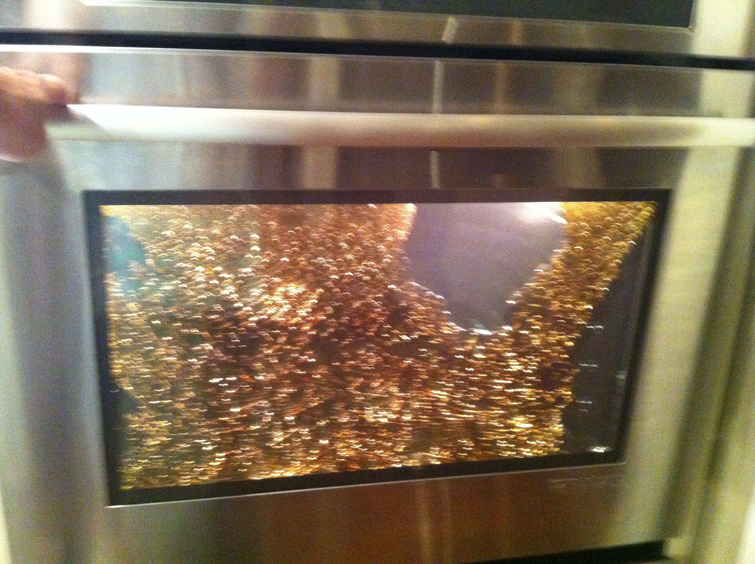 Oven glass door replacement door naturally top 180 complaints and reviews about jenn air wall ovens and convection ovens page 2 eventelaan Images
