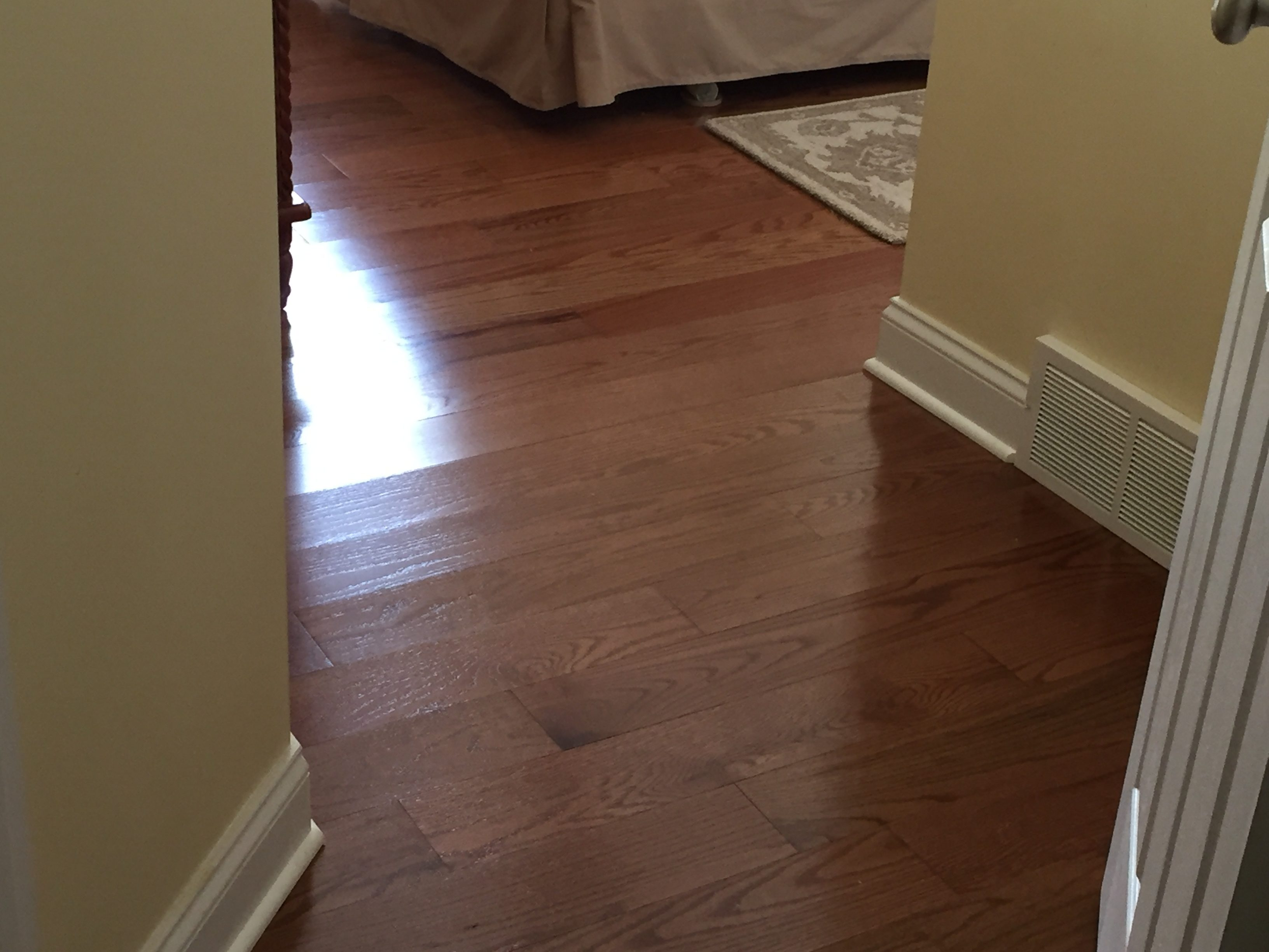 Lowes flooring cleats carpet vidalondon for Hardwood floors dog nails