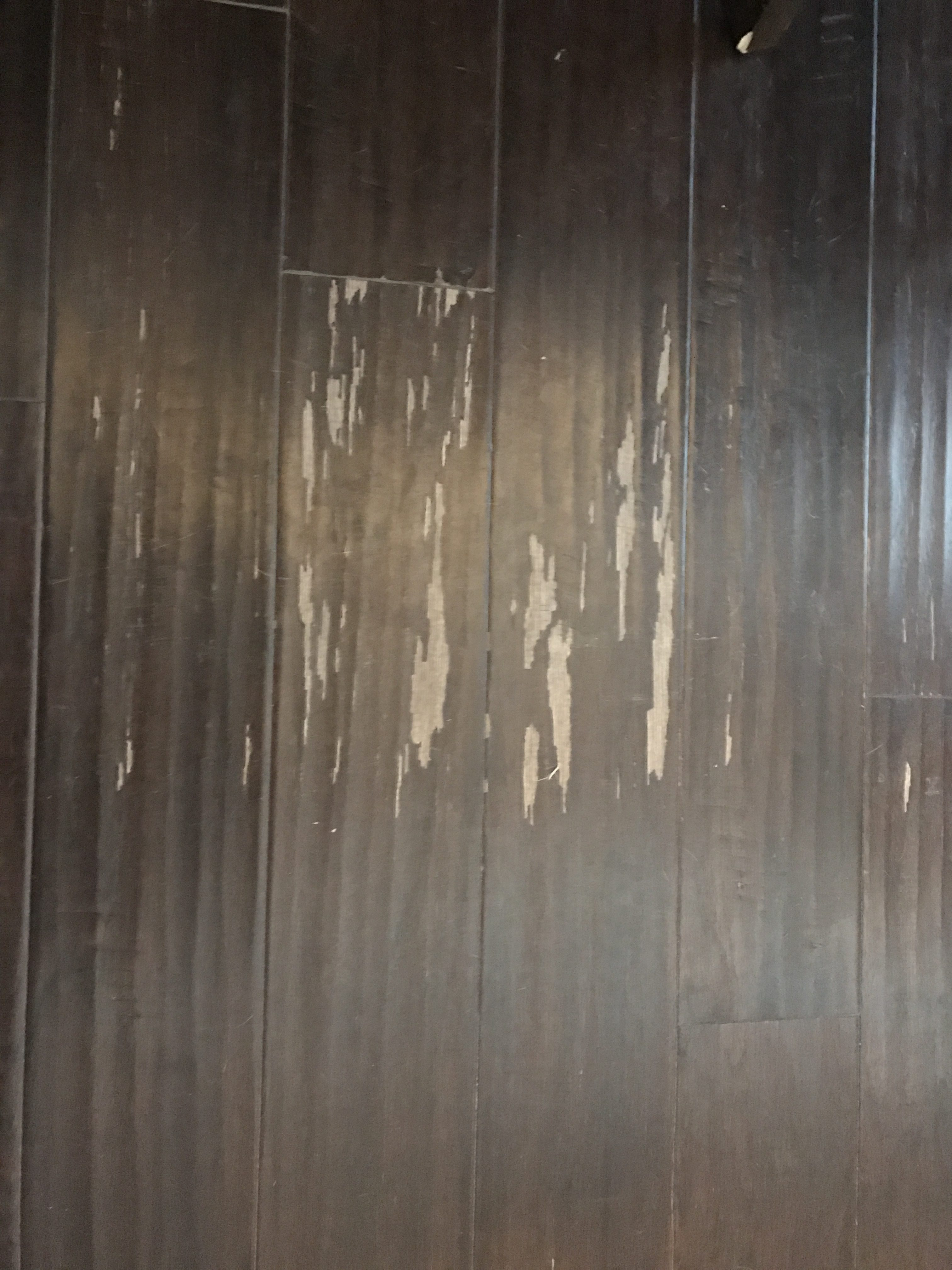 Top 503 reviews and complaints about mohawk flooring for Mohawk flooring reviews
