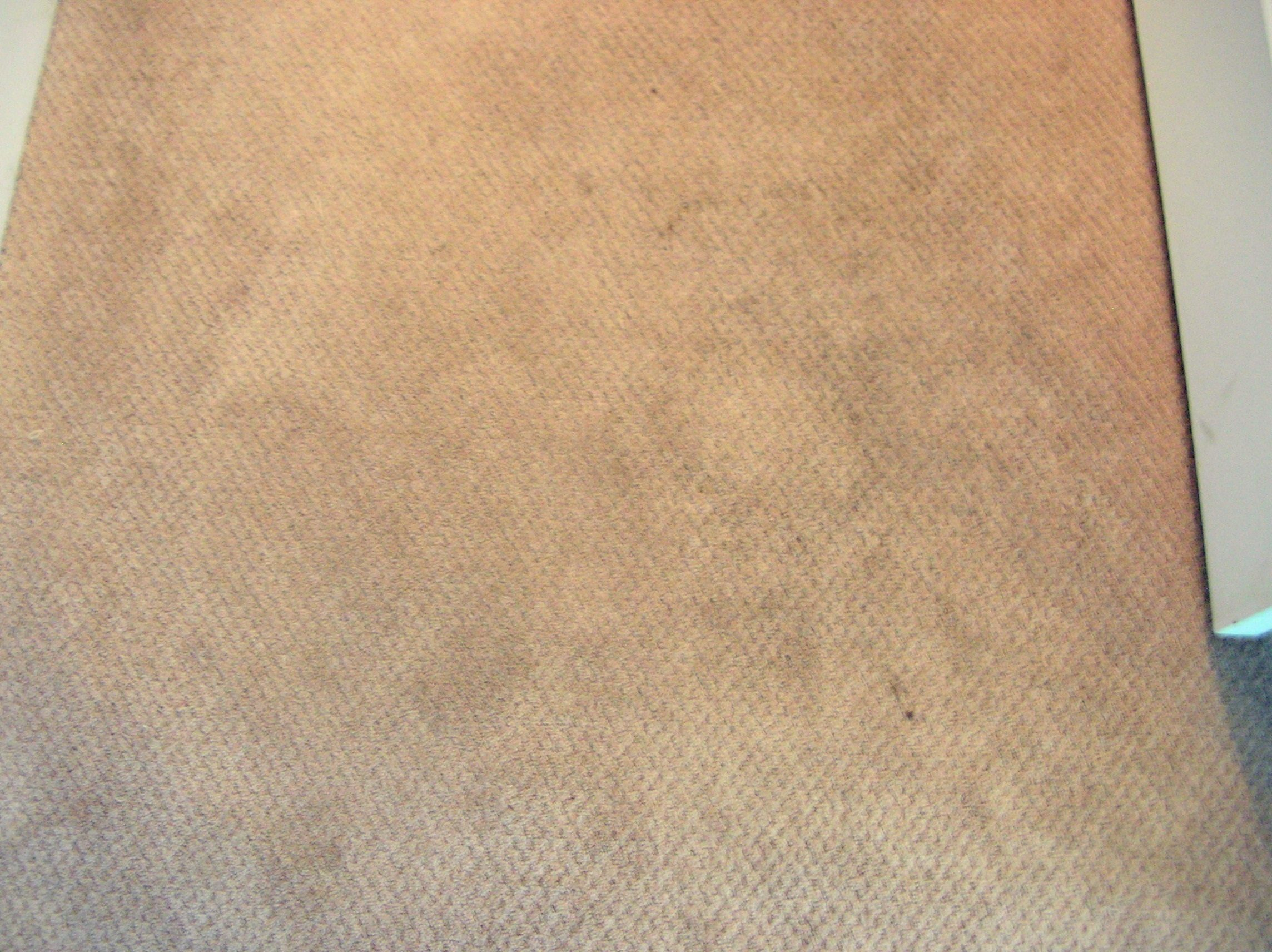 Mohawk carpet warranty complaints floor matttroy for Mohawk flooring