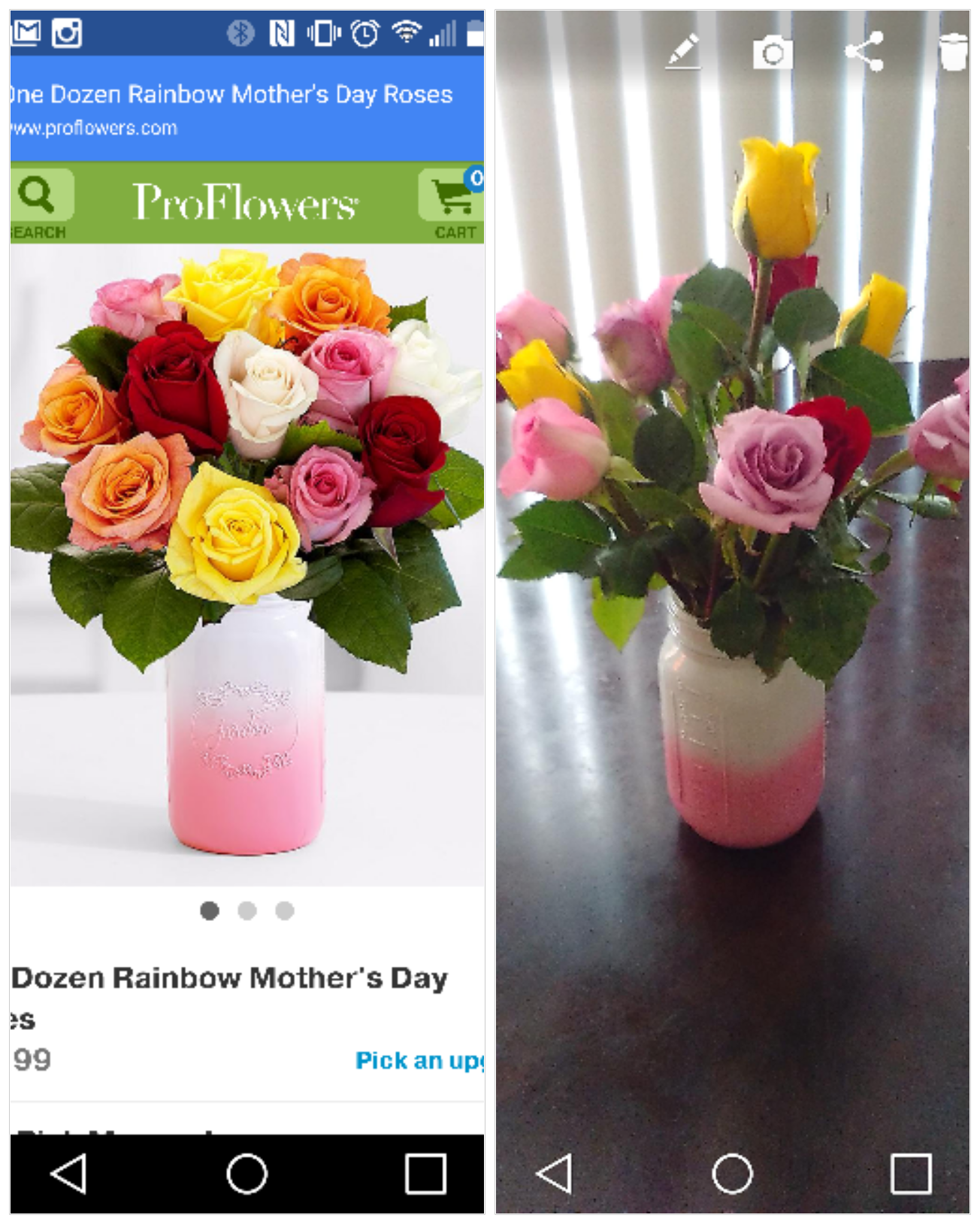 Top 846 plaints and Reviews about ProFlowers