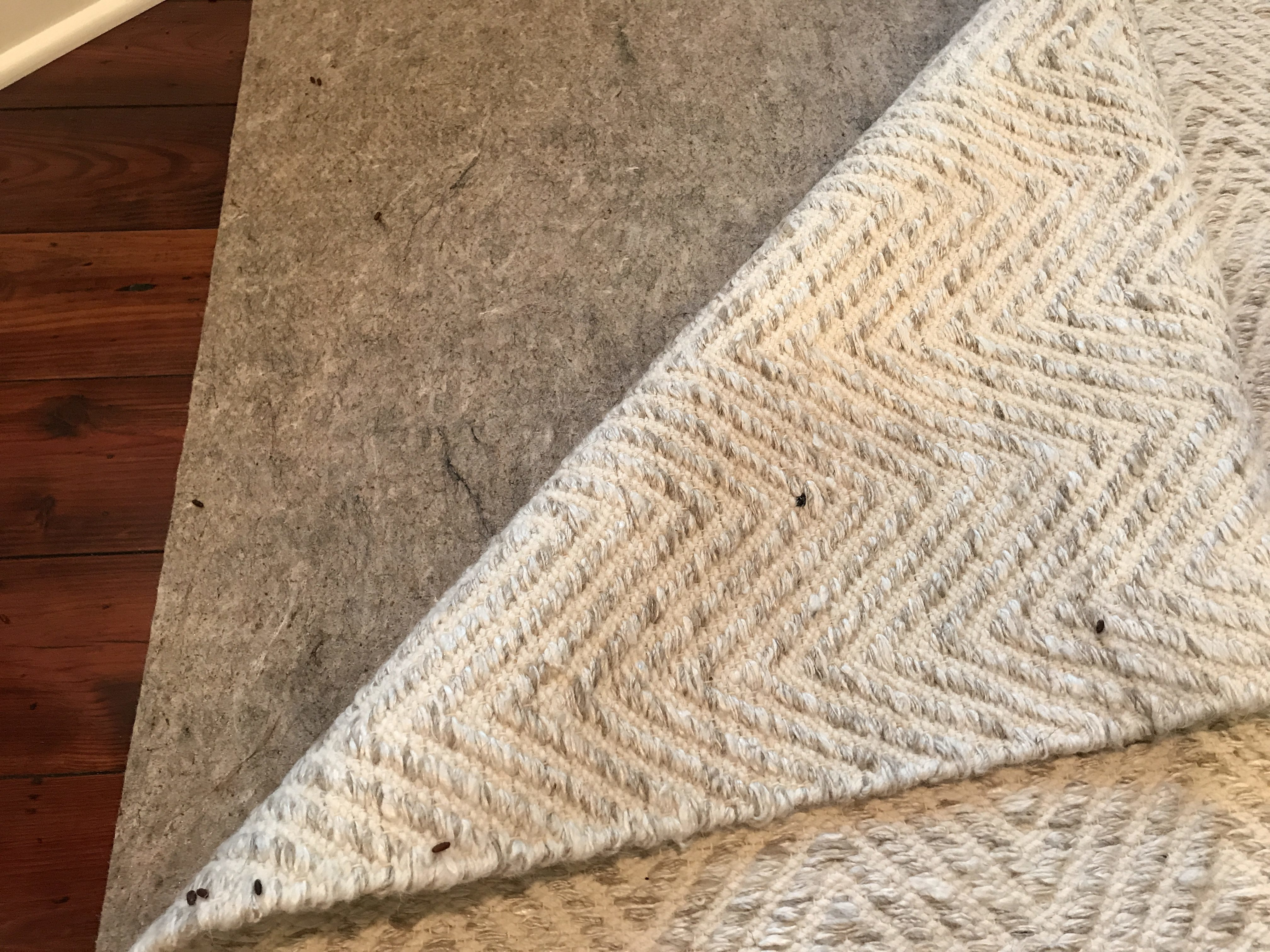 Restoration Hardware Rugs Reviews Rugs Ideas