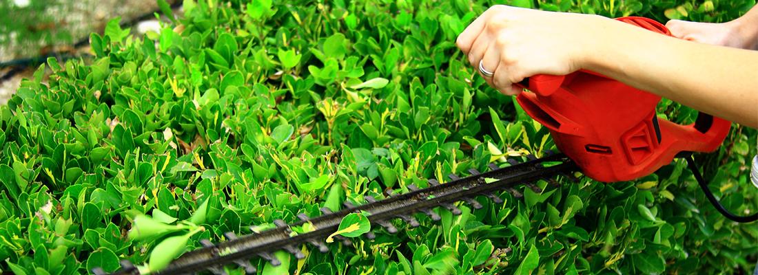 Compare The Best Lawn Care Companies Consumeraffairs
