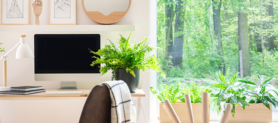 home desk with forrest view
