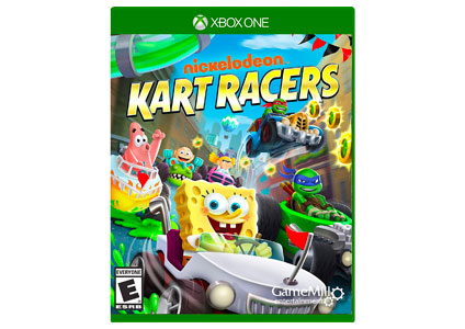 kart Racers video game
